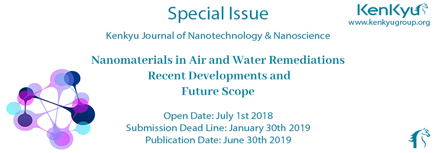 Nanomaterials in Air and Water Remediations: Recent Developments and Future Scope