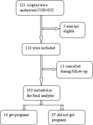 Clinical Outcome in Intrauterine Insemination Treatment of